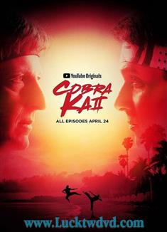 眼鏡蛇 第二季 Cobra Kai Season 2眼鏡蛇 第2季 Cobra Kai Season